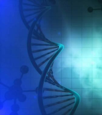 Consciousness affects Human DNA