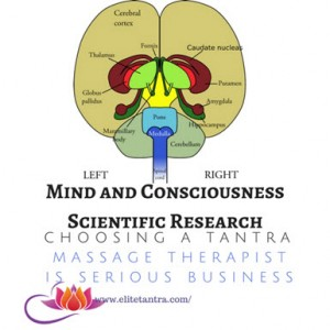 Mind and Consciousness Scientific Research