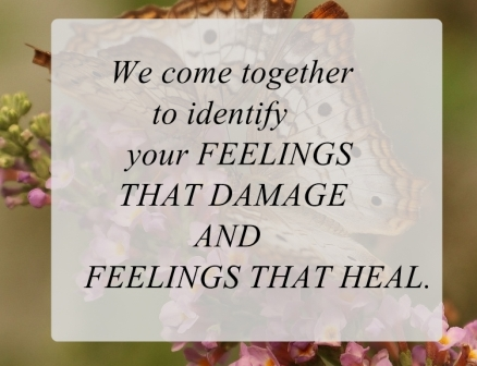 What we really want to identify is your FEELINGS THAT DAMAGE AND FEELINGS THAT HEAL.